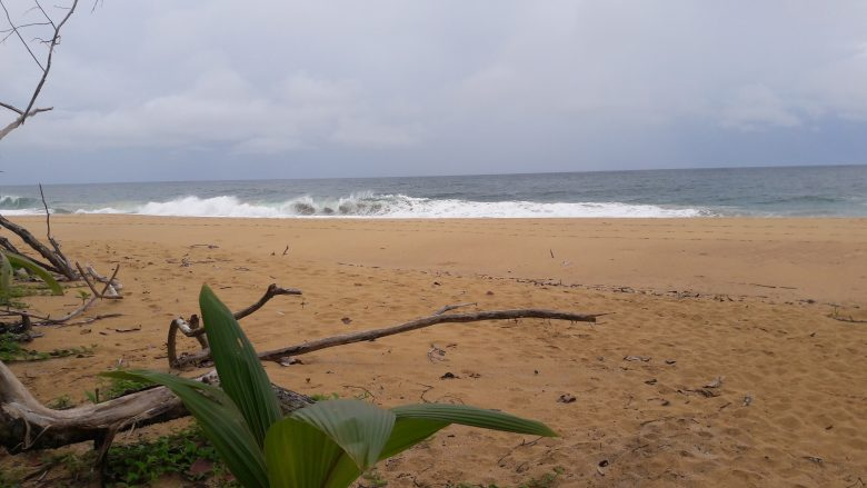 waves crashing down at bluff beach panama, where turtles nest