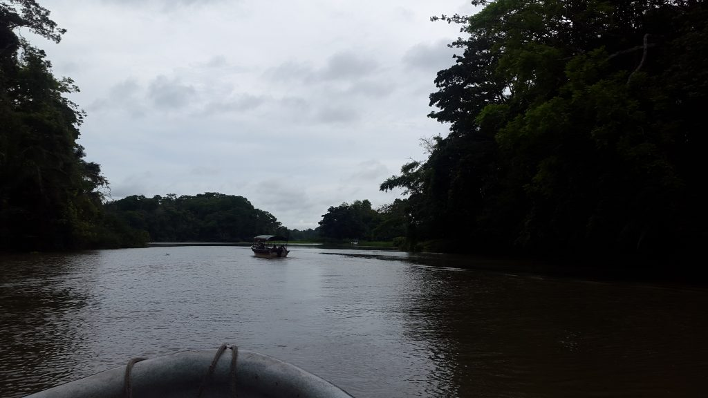 Motorboat sailing through the Chagres river, between dense rain forest in a cloudy day